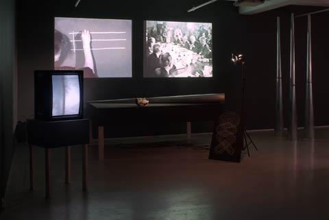 2009 Joan Jonas Mirage_installation