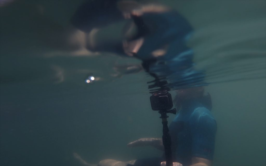 Jana Winderen filming underwater as part of the project Rising Tide, 2019. Photo: Palin Ansusinha.